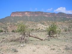 Topography Near Kenya Oil Block